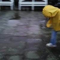 rainy zarafest