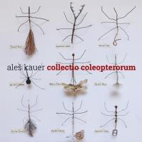 collectio coleopterorum
